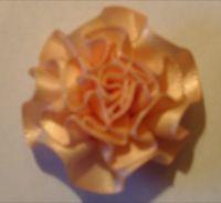 swirl roses peach