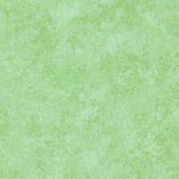 Makower Spraytime colour G45 Mint Green