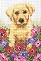 Anchor Puppy Cross Stitch Kit: