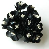 Cherry Blossom Black