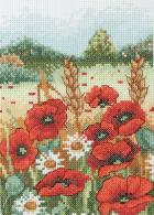 Starter Cross Stitch Kits