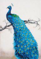Diamond Painting Kit Blue Peacock