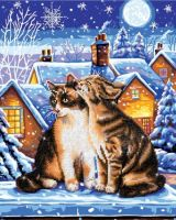 Diamond Painting Kit Stars and Whiskers