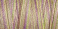 Variegated Cotton 30 300m Col 4024