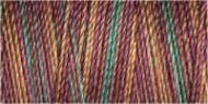 Variegated Cotton 30 300m Col 4038