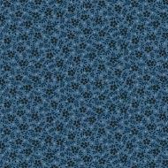 Blue Sky Meadow- Cadet