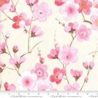 Moda Sakura Branches on Cream