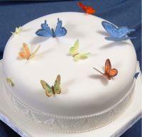 Patchwork Cutters Butterflies - Ladybirds & Bees
