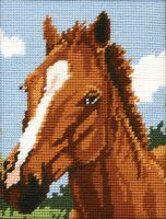 Anchor Brown Horse Tapestry Starter Kit.