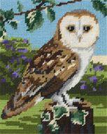 Anchor Owl Tapestry Starter Kit.