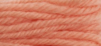 Anchor Tapestry Wool colour 8304