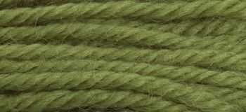 Anchor Tapestry Wool colour 9100