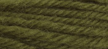 Anchor Tapestry Wool colour 9204