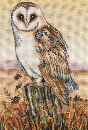 Anchor Owl Horizon Cross Stitch Kit