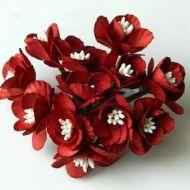 Cherry Blossom Red