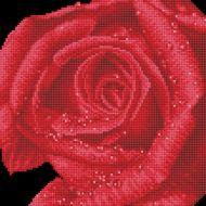 Diamond Painting Kit Rose Dew