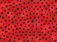 Woodsy Wonders Ladybird Dot
