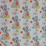 Springs Baby Boy Mickey