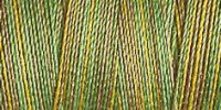 Variegated Cotton 30 300m Col 4019