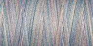 Variegated Cotton Thread - 4069