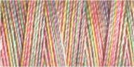 Variegated Cotton Thread - 4102
