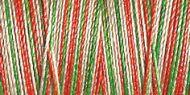 Variegated Cotton Thread - 4104