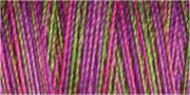 Variegated Cotton Thread - 4123