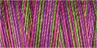 Variegated Cotton 30 300m Col 4123
