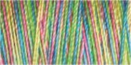 Variegated Cotton Thread - 4124