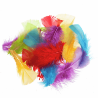 Small Mixed Coloured Feathers x100