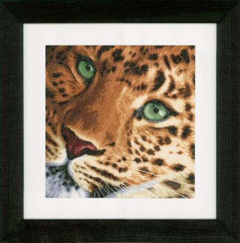 Leopard: (Evenweave) Counted Cross Stitch Kit by Lanarte