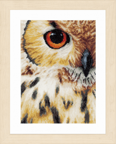 Counted Cross Stitch Kit : Owl Counted Cross Stitch Kit by Lanarte