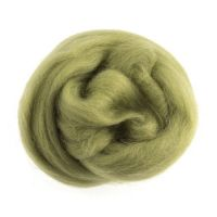 Wool Roving 10g Pistacchio
