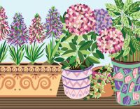Canvas: Royal Paris: Flower Pots