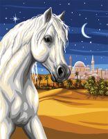 Canvas: Royal Paris: Prince of the Desert