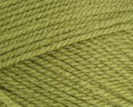 Stylecraft Special Aran 1065 Meadow