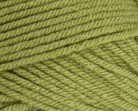 Stylecraft Special Chunky 1605 Meadow