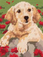 Anchor Labrador Puppy Tapestry Starter Kit.